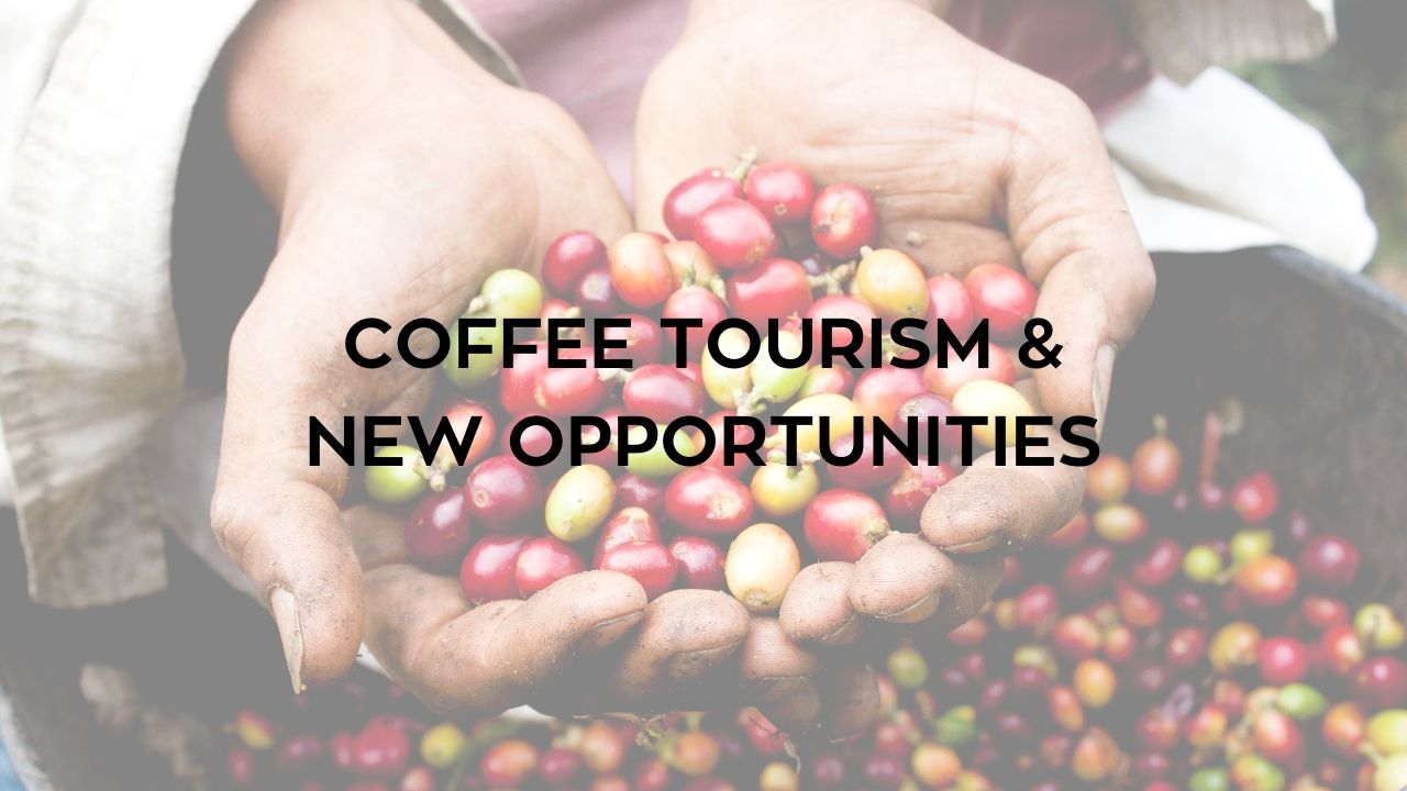 Read more about the article Coffee Tourism: New Opportunities